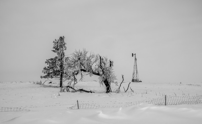 South Dakota Snowy Windmill Scene