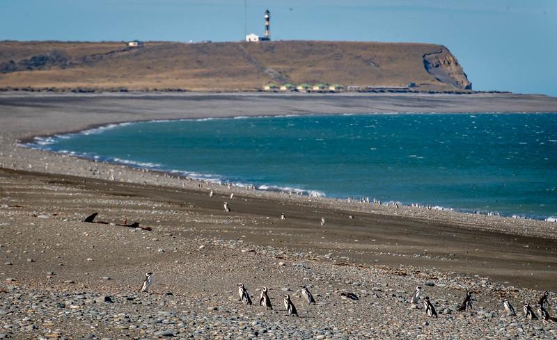 Patagonia_D850_1811_3716_1080p-wm.jpg