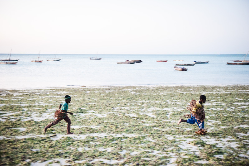 Zanzibar-145.jpg