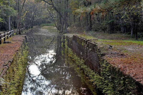 Ogeechee Canal near Savannah, Georgia 11-20-09