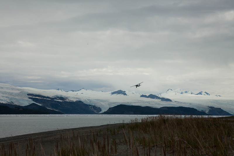 Alaska Icy Bay-4423.jpg