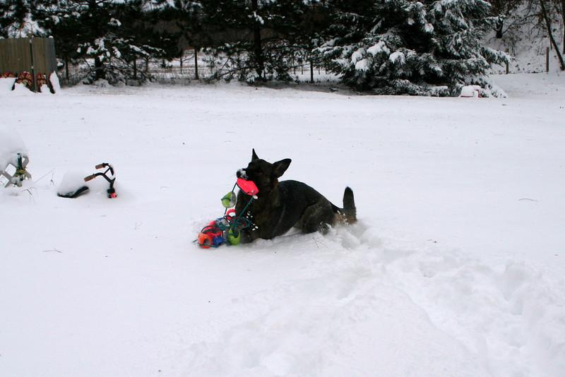 2009.12.9 Blizzard Brita yard (20).JPG