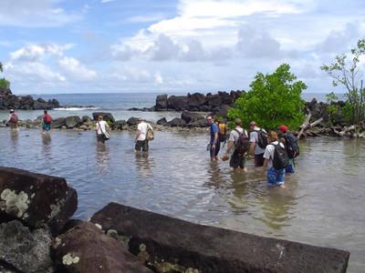 Pohnpei 2004:  Garrett Johnson (Micro 71)