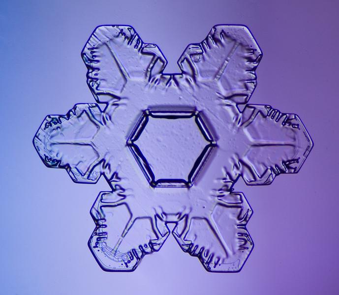 snowflake-5568-Edit.jpg