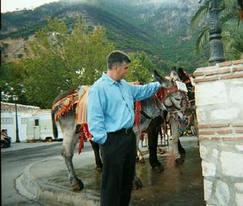 Honeymoon-Mijas, Elviria and nearby towns