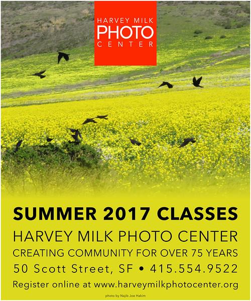 Summer 2017 Poster 20x24