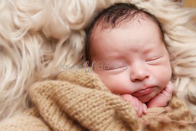 Normal Bean Newborn