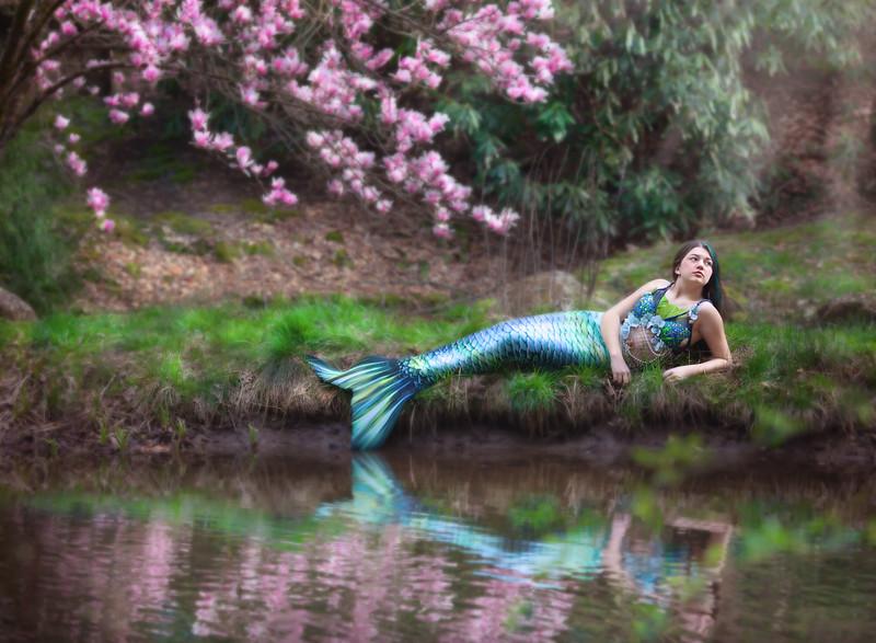 Pond Master.jpg