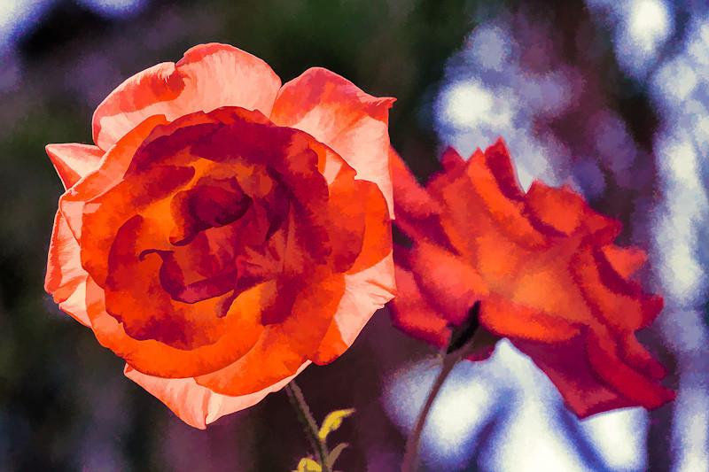 sep 19 - flower.jpg