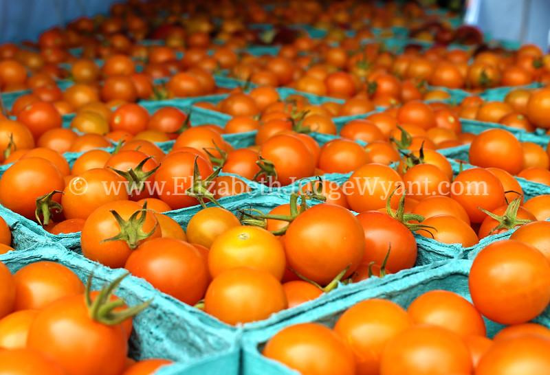 Tomatoes Easton Farmers' Market Zucchini 500, 2014