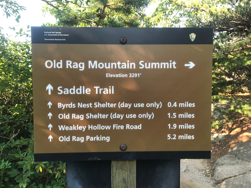 Old-Rag-Mountain-August-2017-28.jpg