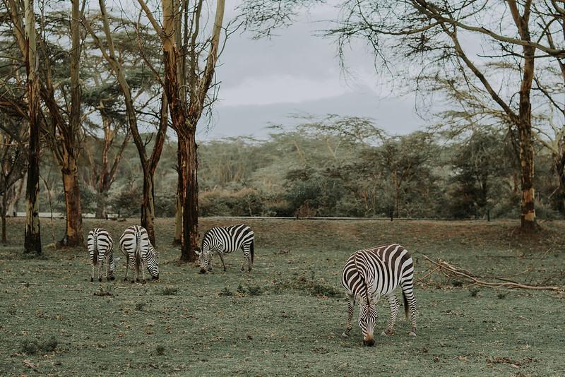 Tu-Nguyen-Destination-Wedding-Photographer-Kenya-Masai-Mara-Elopement-Doris-Sam-52a1.jpg