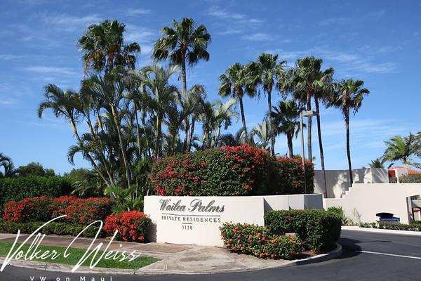 Wailea Palms - Public & Common Area