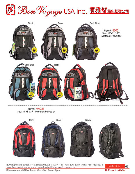 BackPack p46-X2.jpg