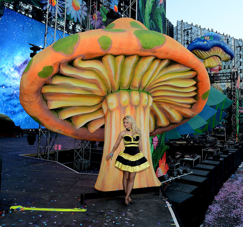 . Holly Madison during the 17th annual Electric Daisy Carnival at Las Vegas Motor Speedway on June 21, 2013 in Las Vegas, Nevada.  (Photo by Denise Truscello/Getty Images for Electric Daisy Carnival)
