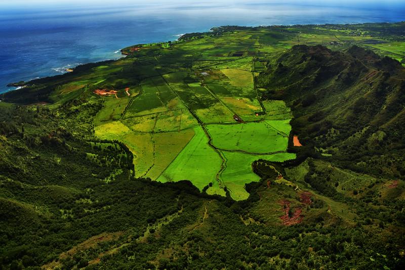 Aerial view of Kauai Valleys and vegetation, Hawaii