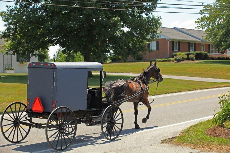 Amish country, PA 6401.jpg