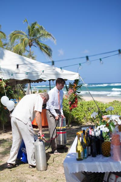 gillin beach kauai wedding-3.jpg