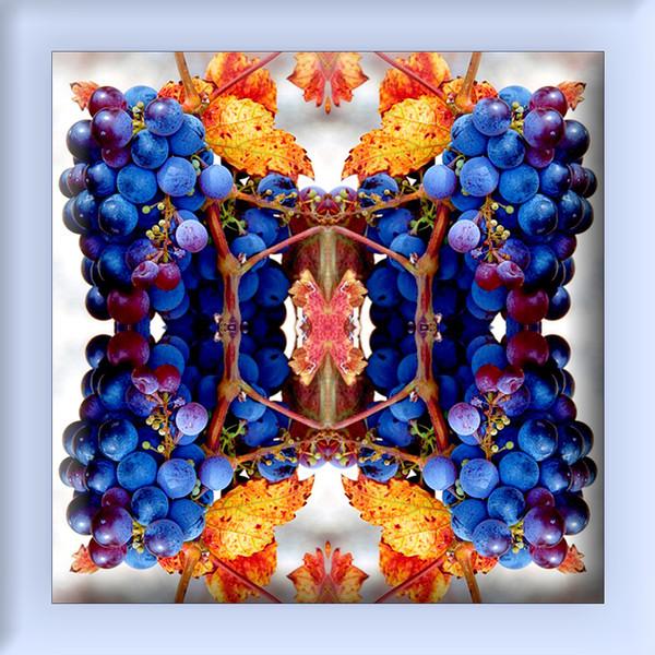 Charlie's Grapes Kaleidoscope single tile.jpg