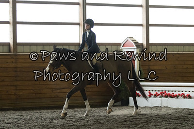 Pre-Childrens Hunter/Equitation