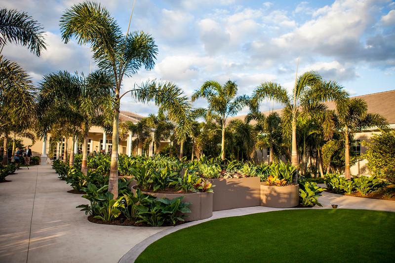 Sensory Arts Garden (3).jpg