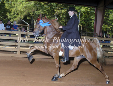 CLASS 5 AMATEUR 4 YR OLD