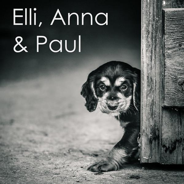 Elli-Icon.jpg