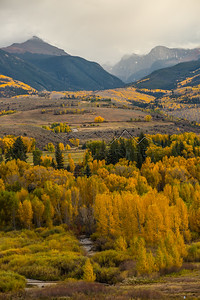 Fall Colors in the Northern Sawatch Range, CO