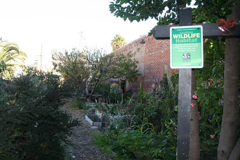NL Community Garden.JPG