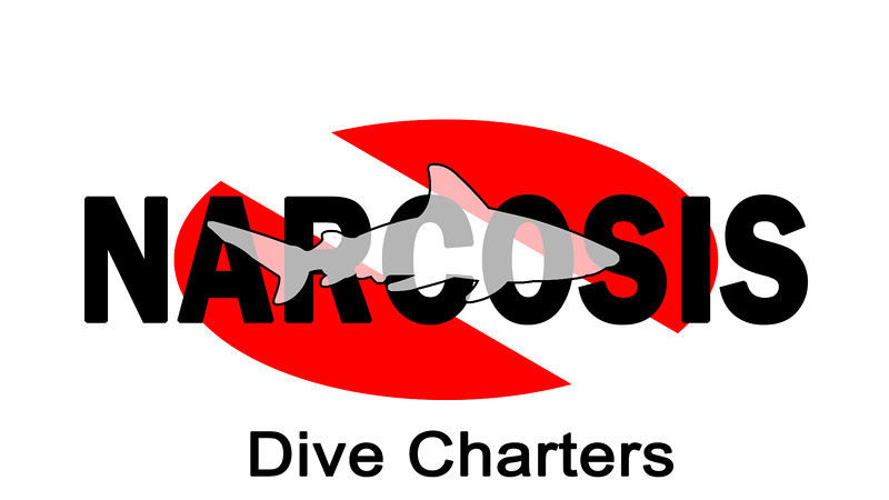 West Palm Drift Dive with Narcosis - Mac's Sports