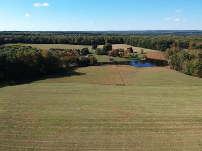 SOLD - Ruckus Ridge Farm