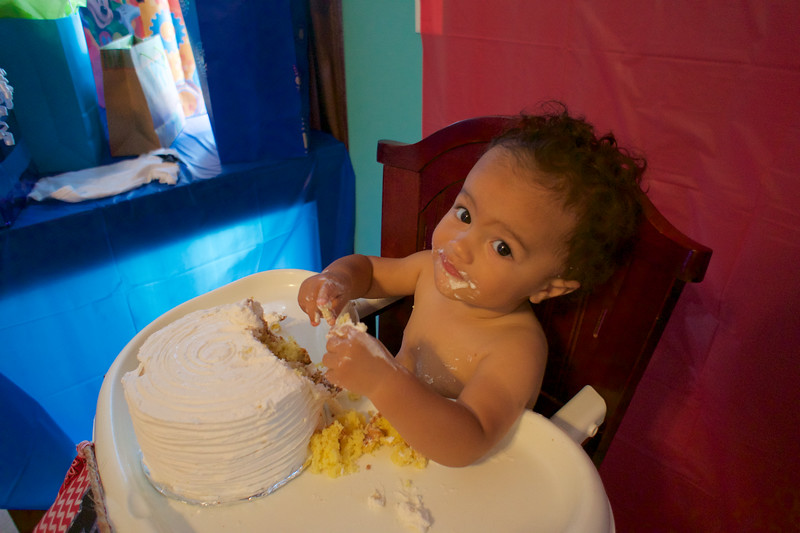 LINCOLN 1st BIRTHDAY PARTY_ 122.jpg