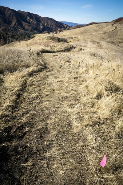 20181201028-Golden Valley Trailwork.jpg