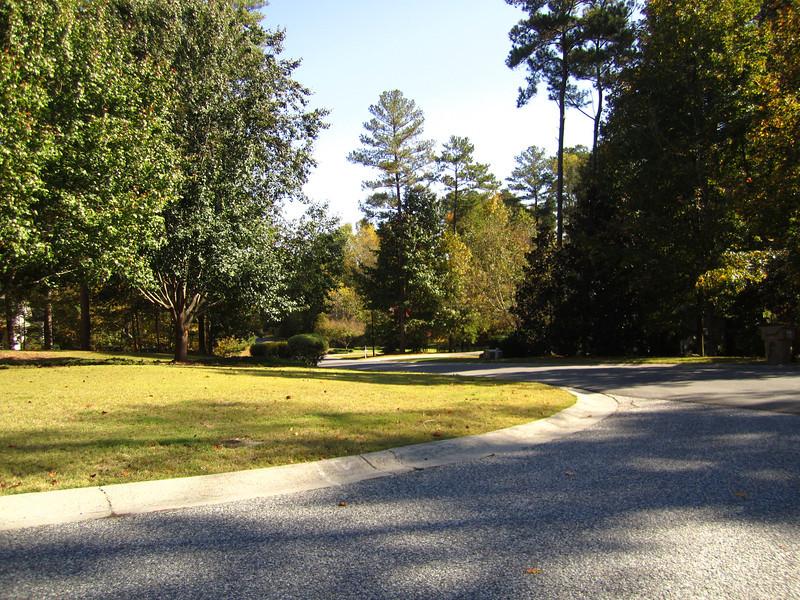 Fox Creek Cumming GA Homes (10).JPG