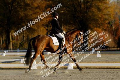 121125 USEA Horse Trial