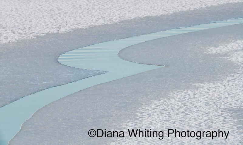 Water Art copy.jpg