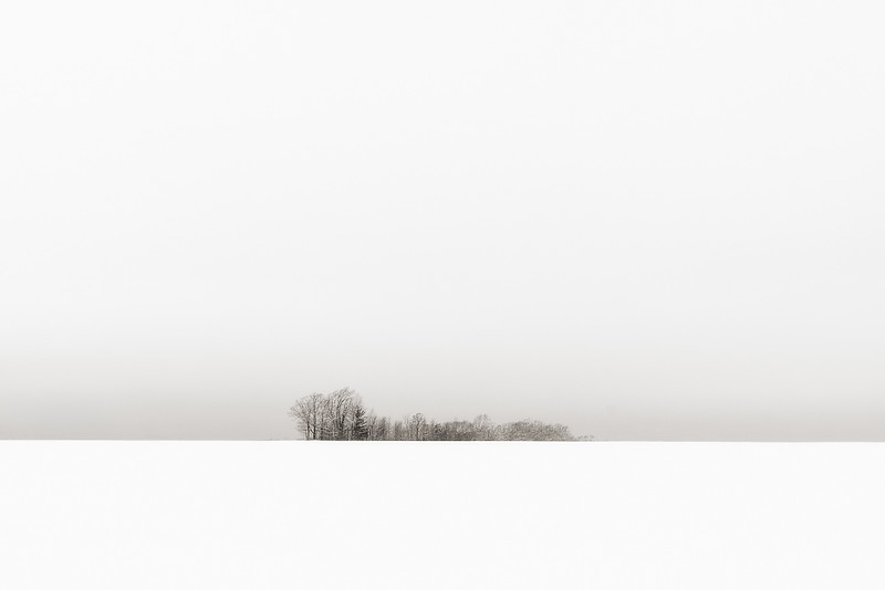 WinterMinimal1.jpg