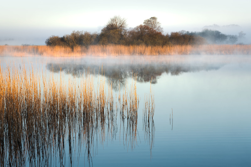 Fog mist lake 2 grass landscape photography denmark sunrise.jpg