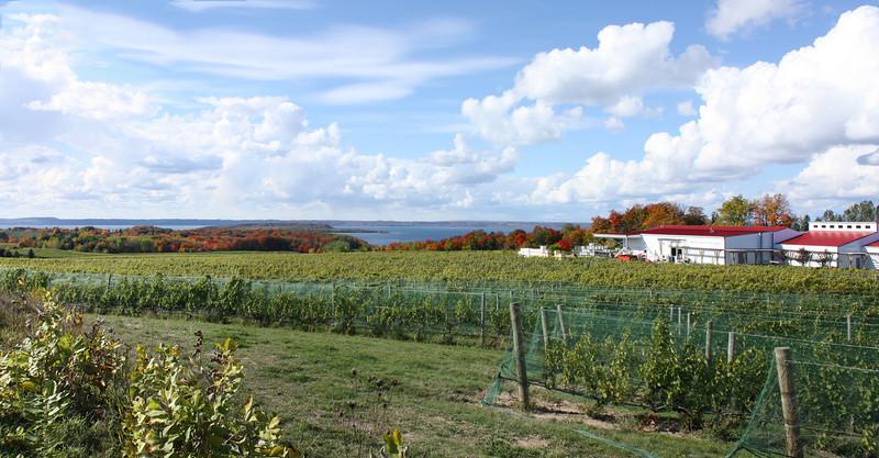 IMG_2079-1Panorama-winery.jpg