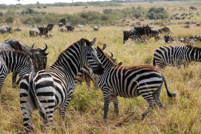 2016 Mercy House Vision Trip Kenya - Day 5 027.jpg