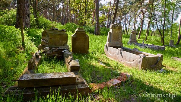 Cmentarz ewangelicko-olęderski w Osieku Łęgu