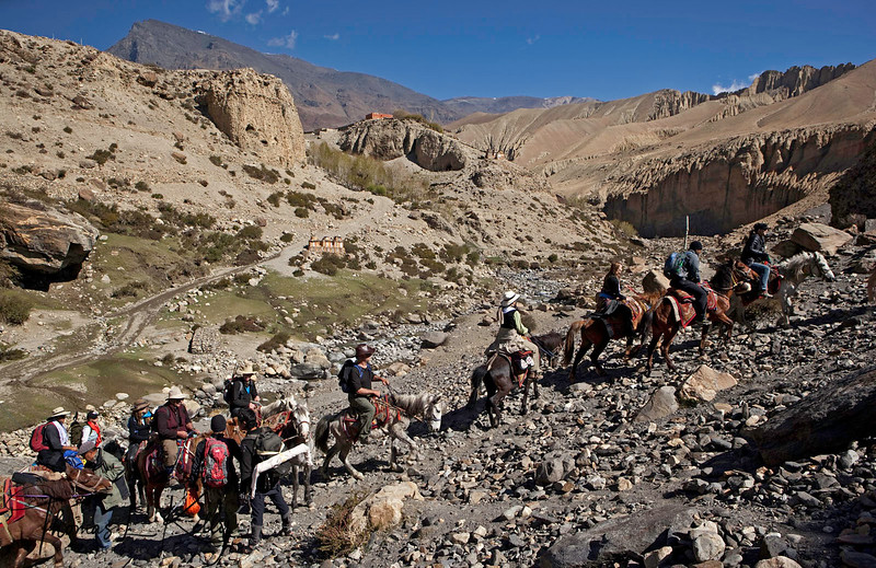 Heading towards Lo Ghekar from Ghemi village. One can witness magnificent mani walls and chortens before arriving Dhakmar. Mustang, Nepal.