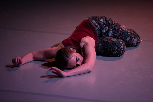 Intrepidus Dance 2017
