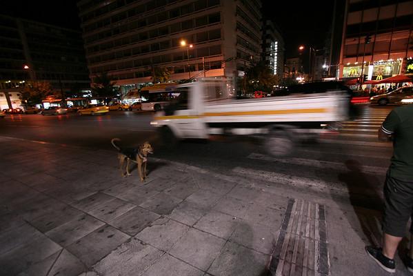 Wild Beasts in Greece/Turkey
