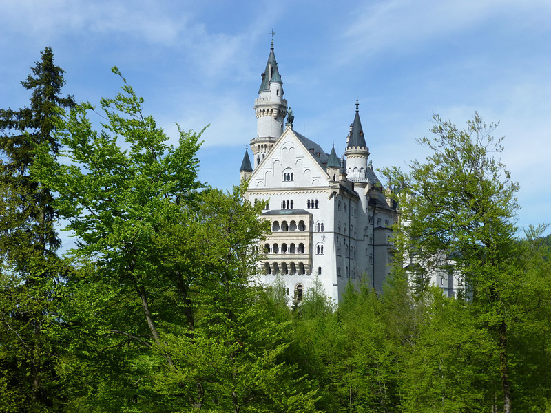 Day2-pre-Neuschwanstein Castle in the trees.jpg