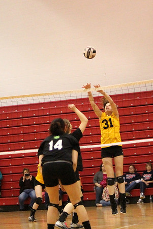 Michiana Area Power League (MAPL)  16U