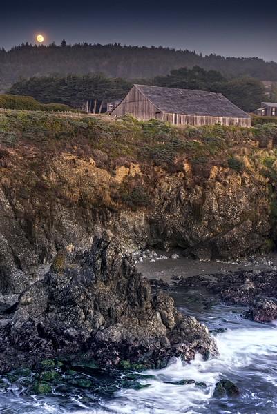 Night Moon, Sea Ranch, California