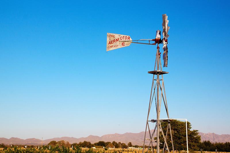 IMG_5594 windmill.jpg