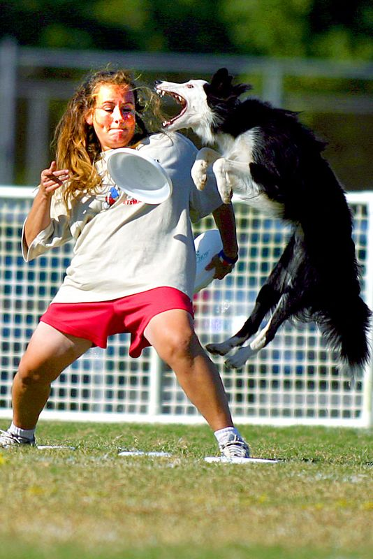 2005 Georgia State Frisbee Dog Championships  ---Cartersville  Oct 15
