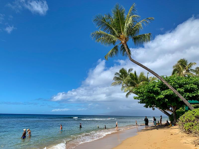 Hawaii 2019-28.jpg
